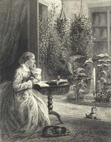 harriet beecher stowe writing
